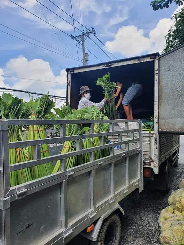thuê xe tải chở trái cây rau củ quả